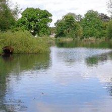 laghetto parco Cirencester
