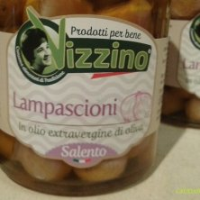 conserve Vizzino