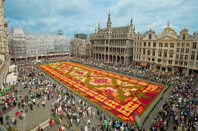 Tappeto Floreale Bruxelles : Genzano commemora le vittime degli attentati di bruxelles con un