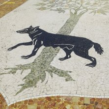 mosaico lupa