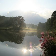 panorama giardino botanico Meise