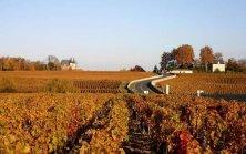 Route-des-Chateaux-a-Pauillac_
