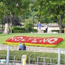 fiori Molveno