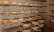 formaggi rifugio Crucolo