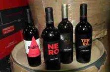 vini della Cantina Conti Zecca