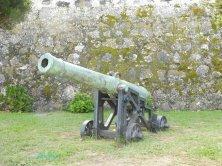 cannoni al forte