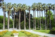 giardino nazionale Atene