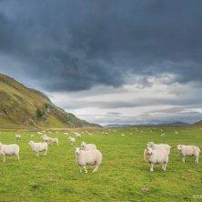 panorama irlandese