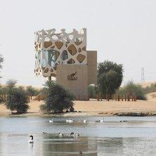 Al Marmoum (3)