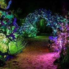 giardini illuminati Chaumont