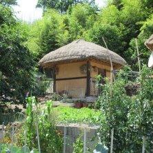 casa tetto di paglia aYangdong Village