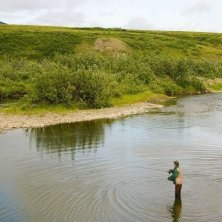 Alaska Solomon River pesca al salmone foto Michael DeYoung