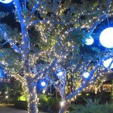 alberi illuminati Songdo