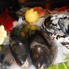 pesce Madeira