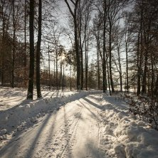 Kufsteinerland Winter_Ebbs_(c) VAN MEY (12)~1
