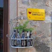 Targa della Strada del Vino dei Coilli Euganei_V.Galuppo tour delle eccellenze