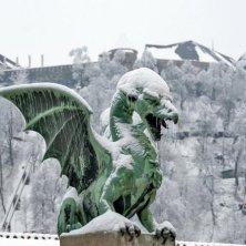 drago con le neve