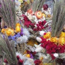 fiori secchi per San Casimiro Vilnius
