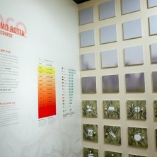 Museo di Geografia Ph Anna Bellettato per Unipd