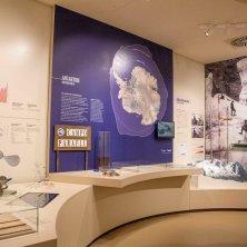 Museo di Geografia_ Sala Misura con il plastico della Marmolada