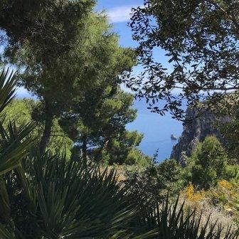 panorama Sicilia Monte Catalfano