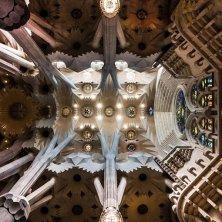 soffitto Sagrada Familia