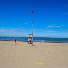 Albarella_la spiaggia_phVGaluppo