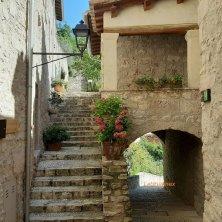 ortensie negli angoli di Castello di Postignano