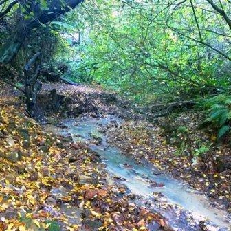 Monterano d'autunno
