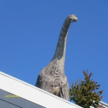 dinosauro a Liberec