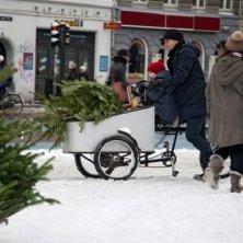 Copenhagen-Noerrebro-Sankt-Hans-Torv-christmas-tree-in-cargo-bike-small