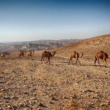 nel deserto israeliano Qumran