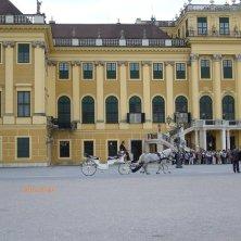 carrozza a Schönbrunn