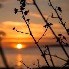 tramonto Mallorca Files