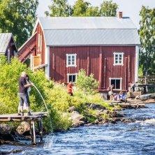 Kukkola_foto linnea isaksson Lapponia Svedese