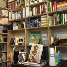 studio gatti di Hemingway Key West