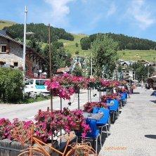 fiori nel borgo