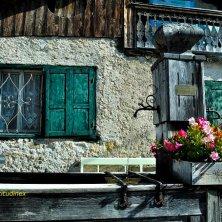 Coi_fontana_fotoEVallarin