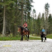 Passeggiata a cavallo_fotoEVallarin