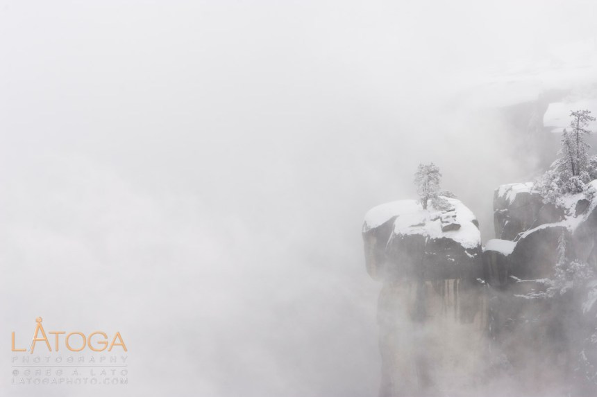 Snow covered pint trees sit on top of cliff peeking through winter storm clouds in Yosemite National Park.