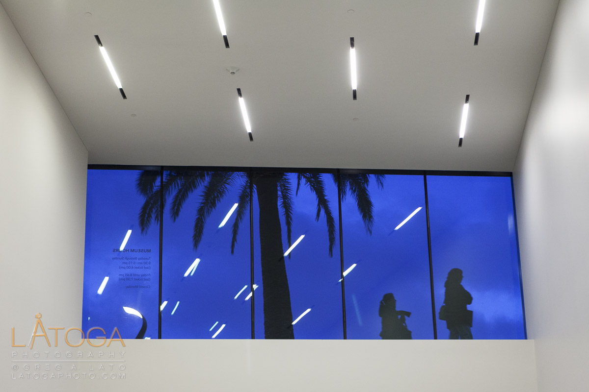 Pedestrians and Palm Tree seen through window at de Young Museum in San Francisco, California.
