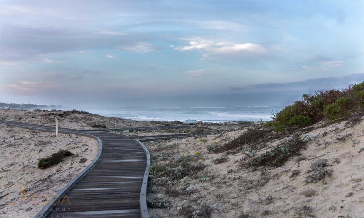Dawn at Asilomar Dunes Natural Preserve Boardwalk