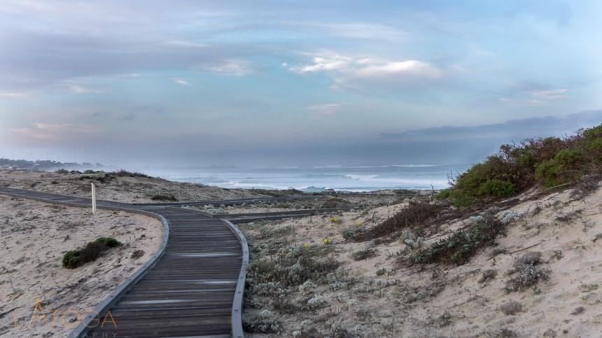 Dawn at Asilomar Dunes Natural Preserve Boardwalk