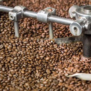 MEXIQUE ALTURA BIO - Café grains et moulus- La Torréfaction d'Arcachon
