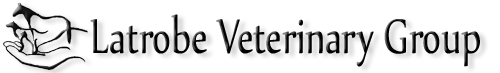latrobe veterinary group - Newsletters