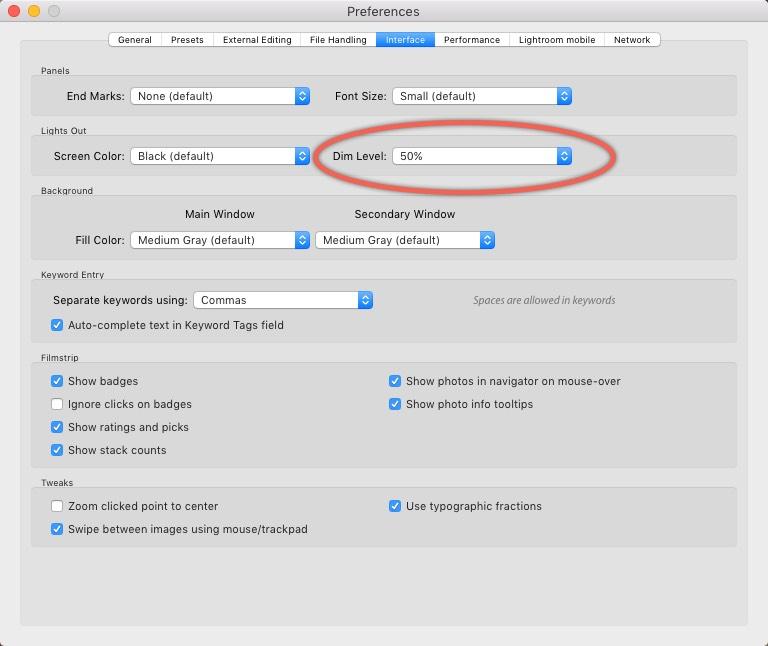3 - Lightroom Interface Preferences