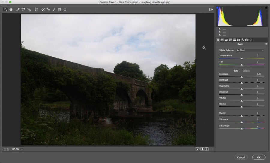 4 - Camera Raw Interface - Photoshop