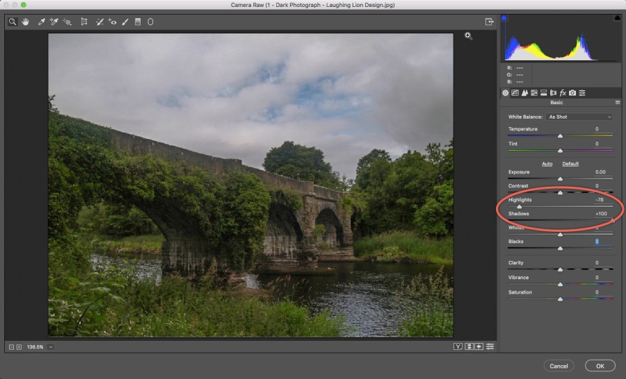5 - Camera Raw - Shadows Highlights Photoshop