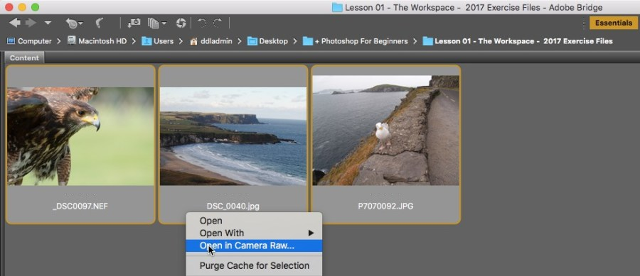 Open Multiple Files From Camera Raw