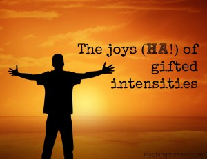 The joys (HA!) of gifted intensities